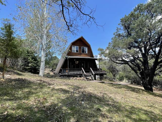 620 S Lloyd Canyon, Pine Valley, UT 84781 (MLS #21-224775) :: Sycamore Lane Realty Co.