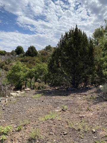 Oakridge Cir #12, Pine Valley, UT 84781 (MLS #21-225897) :: eXp Realty