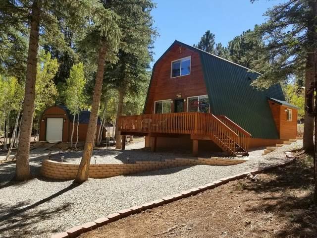 65 N Pinetree Trail, Duck Creek, UT 84762 (MLS #21-226402) :: Selldixie