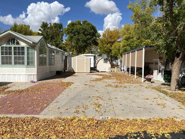 425 Rhonda, Parowan, UT 84761 (MLS #21-226897) :: The Real Estate Collective