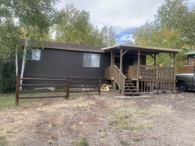 175 Skoots Creek Rd, Panguitch, UT 84759 (MLS #21-227018) :: Selldixie