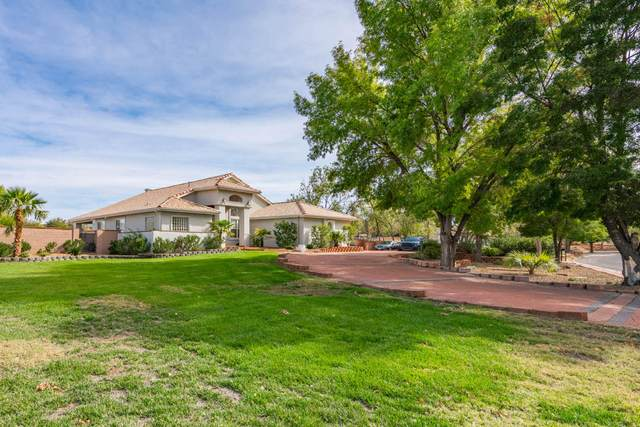 3257 S Swaps, St George, UT 84790 (MLS #21-227205) :: Hamilton Homes of Red Rock Real Estate & ERA Brokers Consolidated