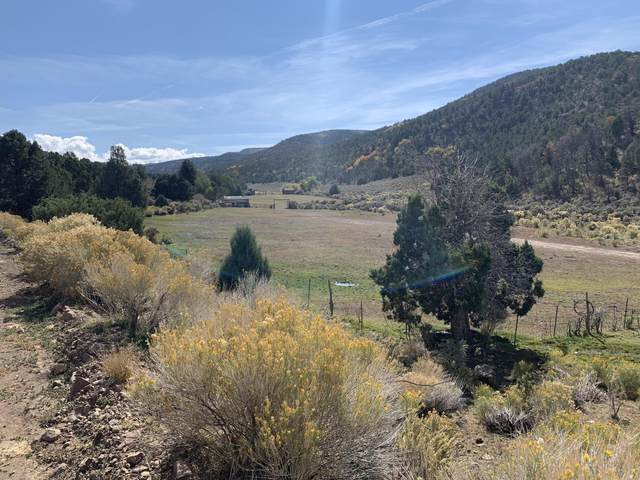 200 Acres At Coyote Hills, Beaver, UT 84713 (MLS #21-227216) :: Team SURGE @ KW St. George