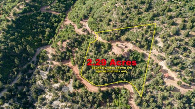 Zion Panorama Phase 4-Lot 19, Virgin, UT 84779 (MLS #16-178803) :: The Real Estate Collective