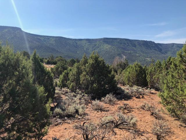Overlook Dr #332, New Harmony, UT 84757 (MLS #18-196032) :: Remax First Realty