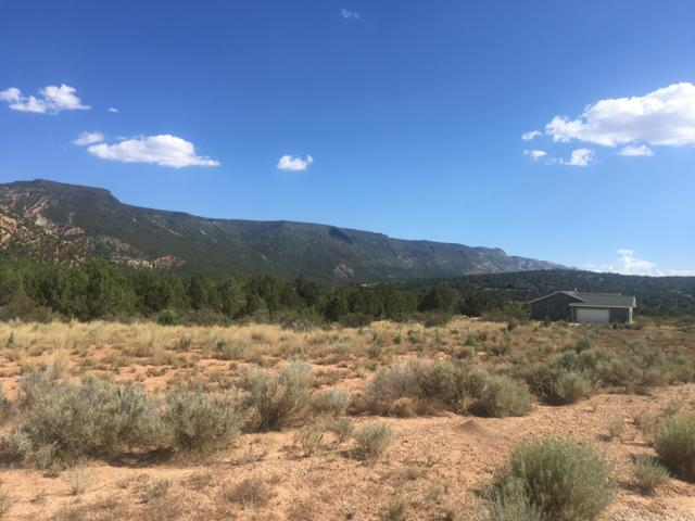 3014 E Badger Way #251, New Harmony, UT 84757 (MLS #18-196198) :: The Real Estate Collective