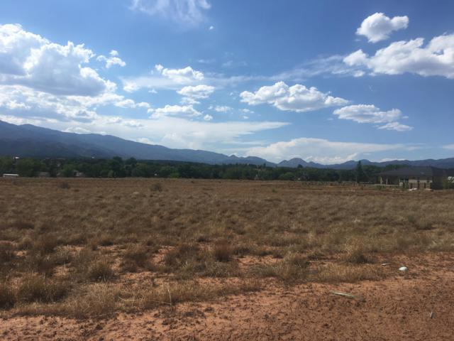E Badger Way #349, New Harmony, UT 84757 (MLS #18-196282) :: The Real Estate Collective