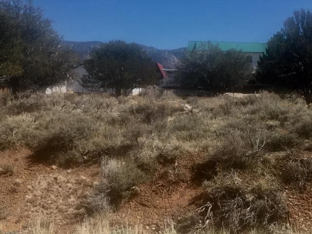 137 S Lloyd Canyon Rd, Pine Valley, UT 84781 (MLS #19-199948) :: Remax First Realty