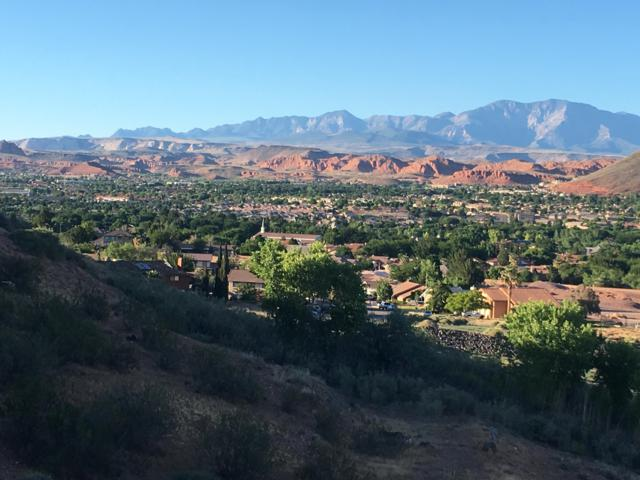 1845 W Canyon View Dr #102, St George, UT 84770 (MLS #19-201831) :: Red Stone Realty Team