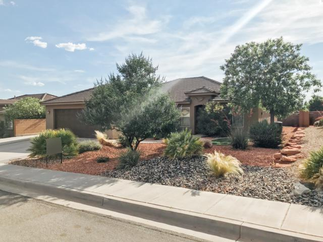 981 N Painted Cloud, Washington, UT 84780 (MLS #19-204538) :: The Real Estate Collective