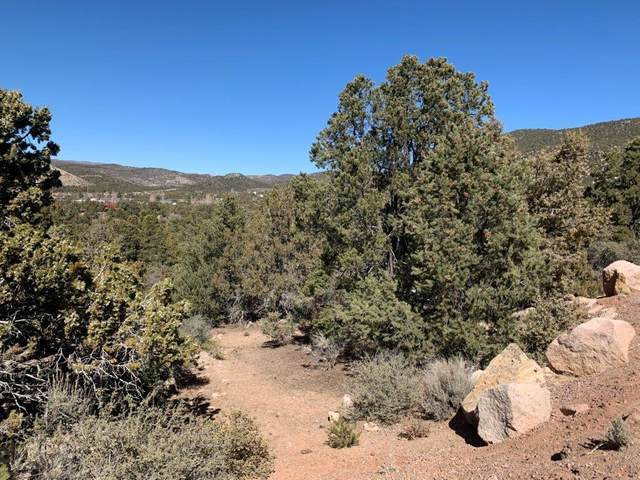 183 E Valley View Rd Lot 13, Central, UT 84722 (MLS #21-220644) :: John Hook Team