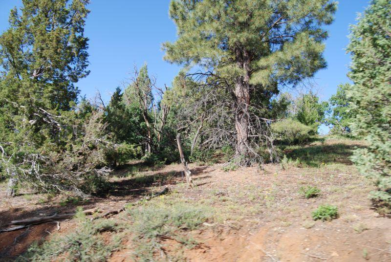 1430 Elk Ridge Dr, Er 1-27 - Photo 1