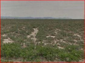 Lot 2322 Garden Valley Ranchos - Photo 1