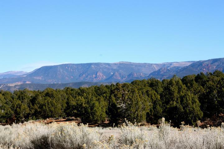 Lot 54 Vaquero Way - Photo 1