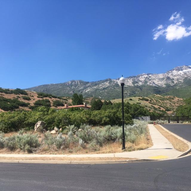 487 E East View Ln, Alpine, UT 84004 (MLS #17-185937) :: Remax First Realty