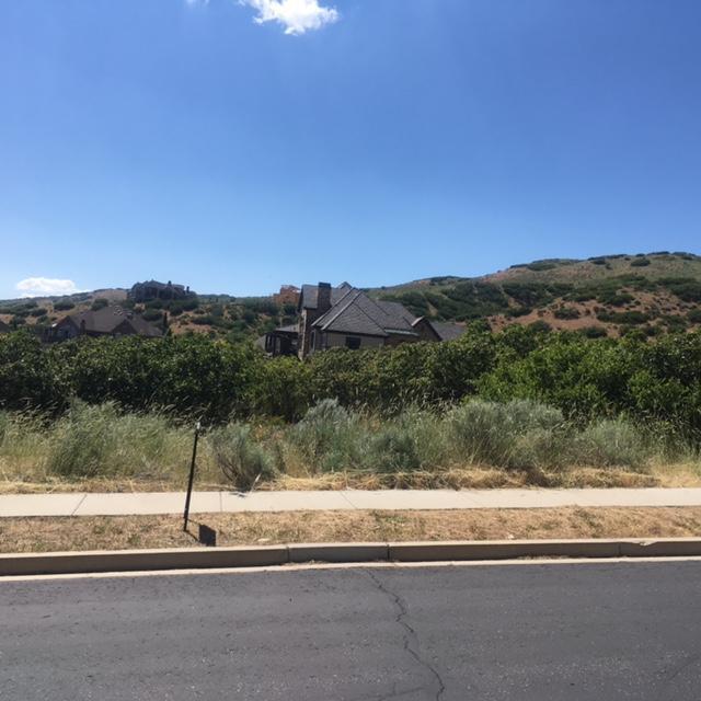 1305 N Elk Ridge Ln, Alpine, UT 84004 (MLS #17-185941) :: Remax First Realty