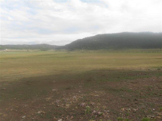 148 Acres Adjoining Panguitch Lake, Panguitch, UT 84759 (MLS #18-192994) :: Remax First Realty
