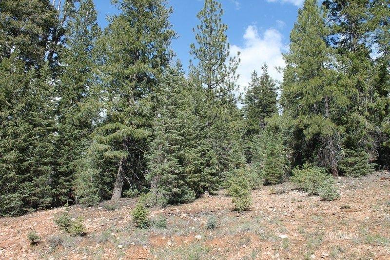 150 Apache Trail - Photo 1