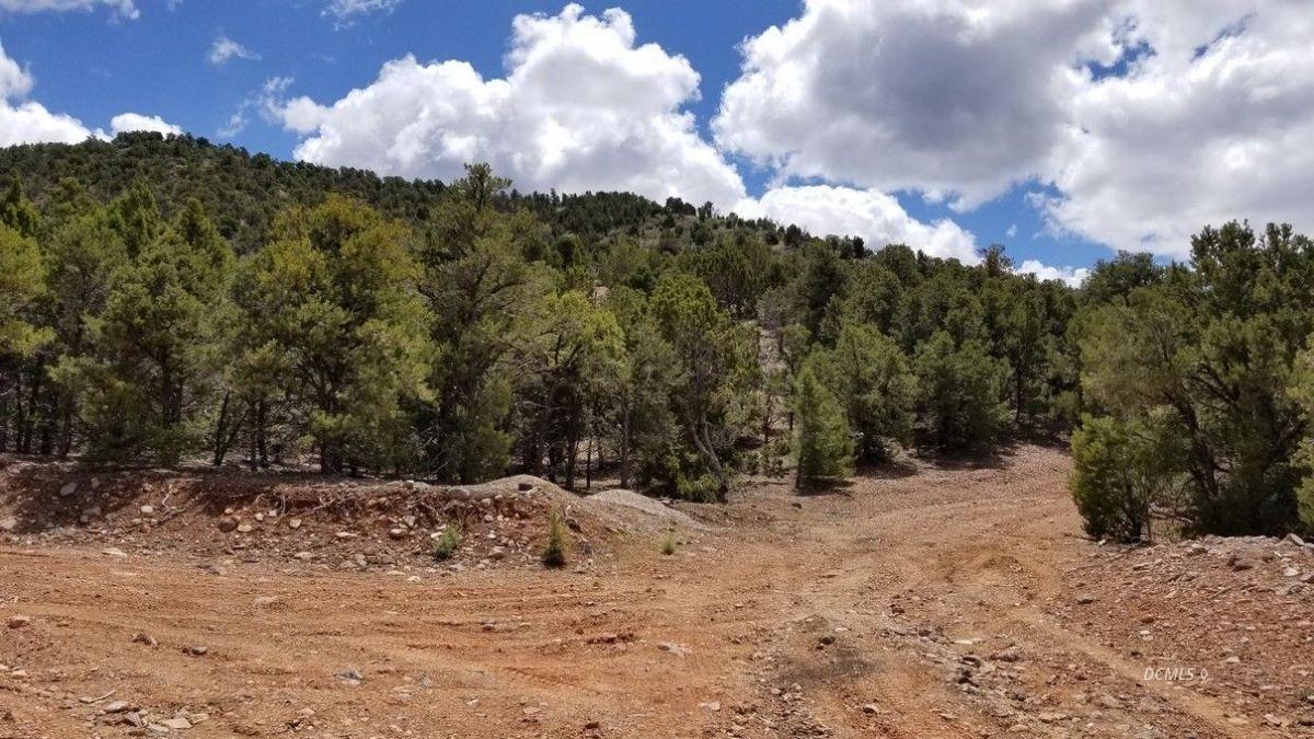Red Canyon 5E - Photo 1