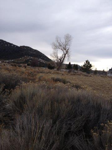 21 N 580 E #11, Pine Valley, UT 84781 (MLS #18-194505) :: The Real Estate Collective