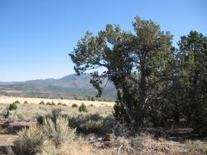 Lot 21 Butch Cassidy #21, Central, UT 84722 (MLS #18-199549) :: Remax First Realty