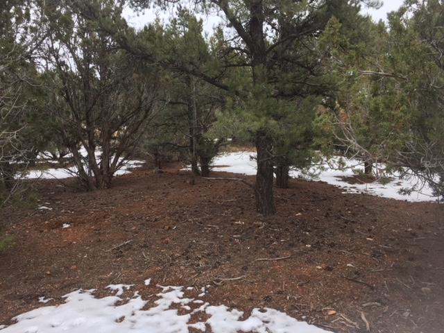 lot 12 Cedar Drive #12, Central, UT 84722 (MLS #19-200068) :: Remax First Realty