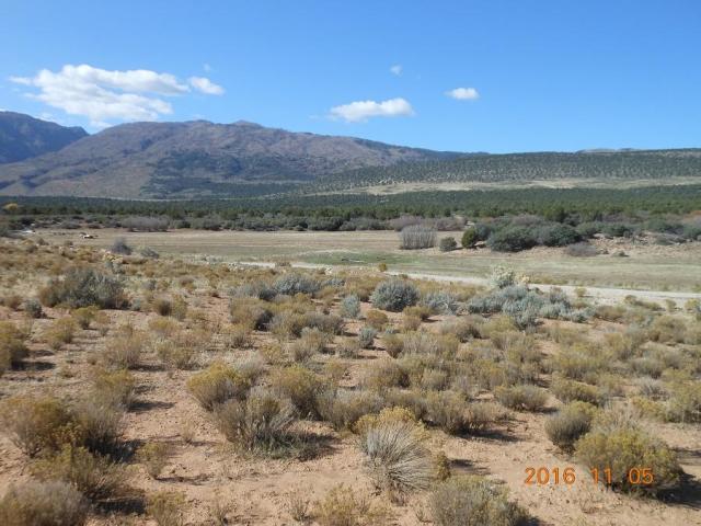5 Acres North Canyon Ranches, New Harmony, UT 84757 (MLS #19-202668) :: Diamond Group