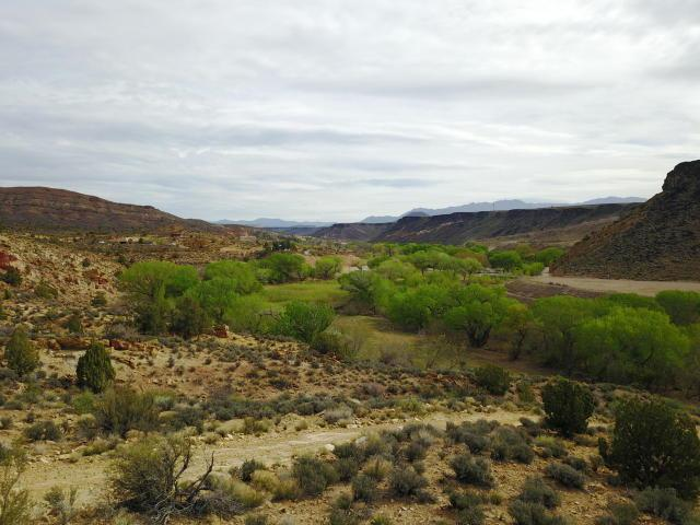 Null, Gunlock, UT 84733 (MLS #19-202862) :: Platinum Real Estate Professionals PLLC