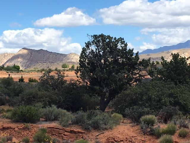Lot 1017 Long Sky Dr, St George, UT 84770 (MLS #19-205303) :: Red Stone Realty Team