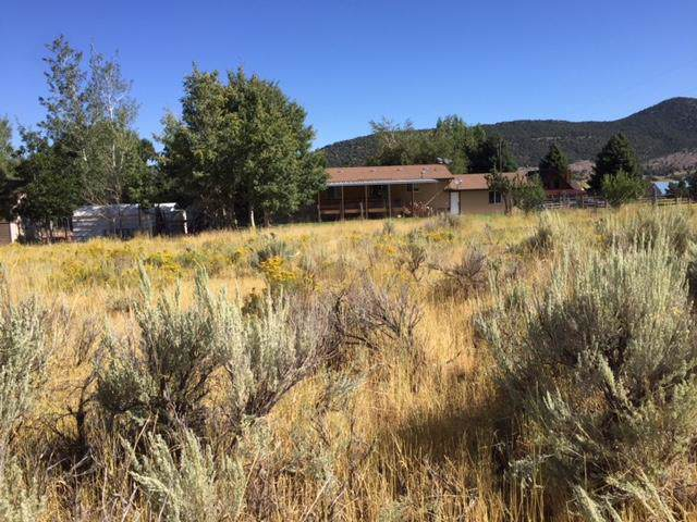 300 W, Pine Valley, UT 84781 (MLS #19-207153) :: The Real Estate Collective