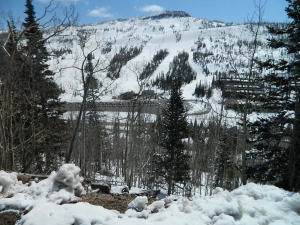 62B Eagles Roost - Photo 1