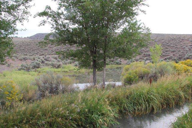 14.50 Ac Hwy 22, Antimony, UT 84712 (MLS #19-208052) :: The Real Estate Collective