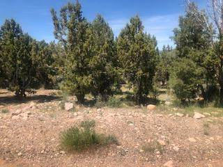 Pinion Cir Lot 9, Central, UT 84722 (MLS #20-213048) :: Team SURGE @ KW St. George