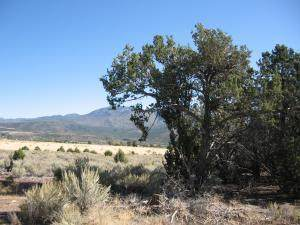 Lot 21 N Butch Cassidy Trail #21, Central, UT 84722 (MLS #20-213908) :: Remax First Realty