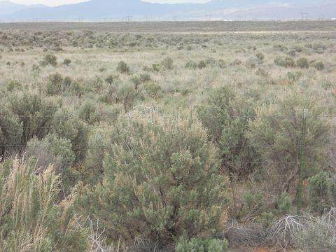 4.49 ACRES Escalante Valley Unit 7 - Photo 1