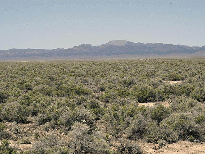 50.39 ACRE Escalante Valley Unit 17 - Photo 1