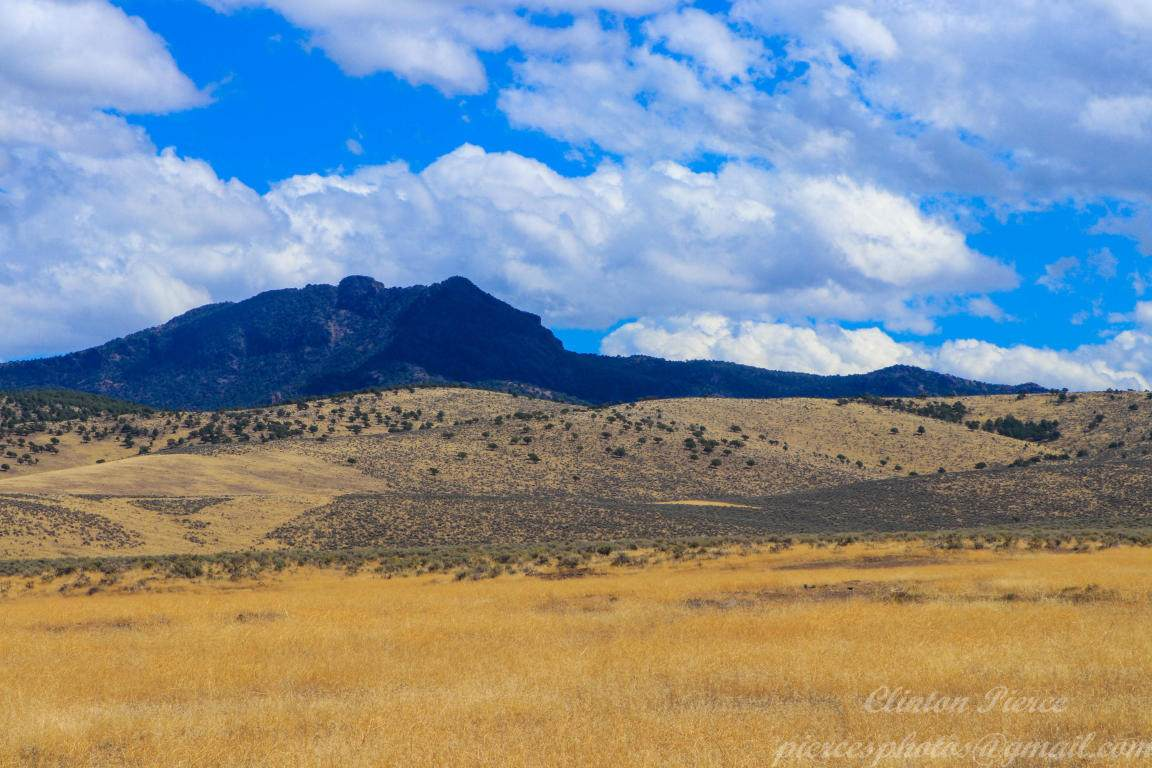 292 Acres On Highway - Photo 1