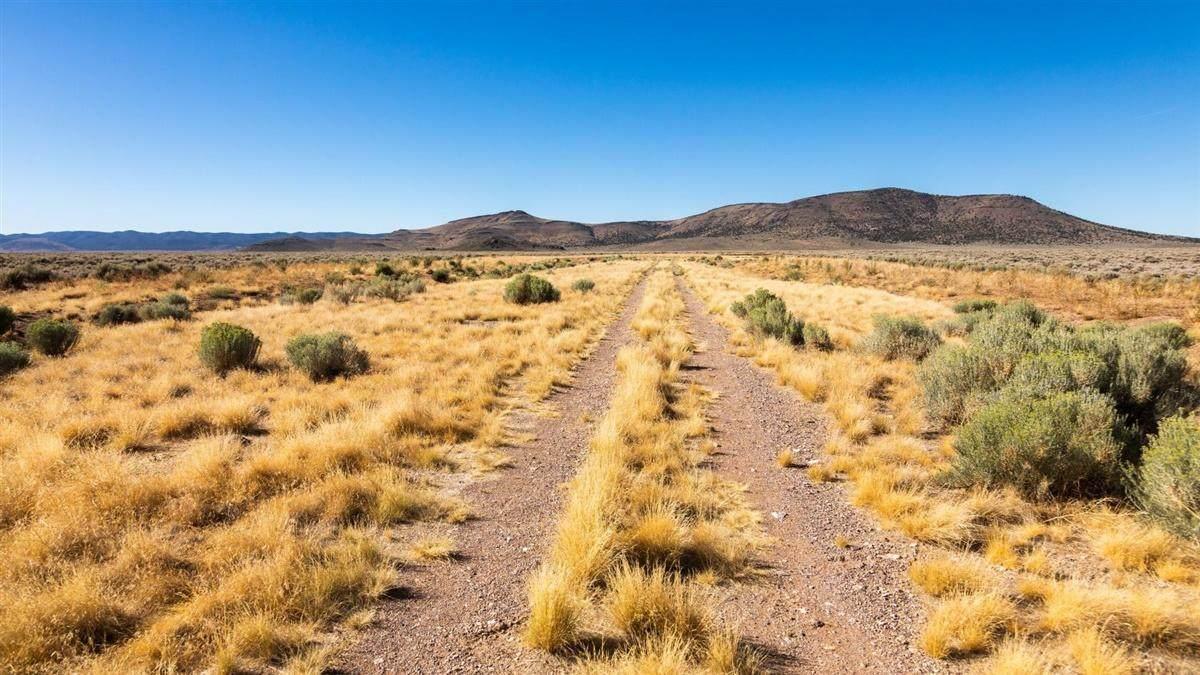 Highway 56 & Antelope Road - Photo 1