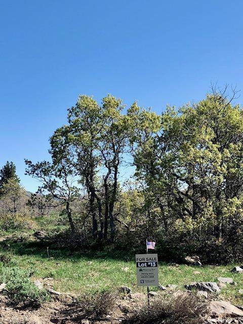 Whispering Pines Lot#13, Virgin, UT 84779 (MLS #21-222933) :: John Hook Team