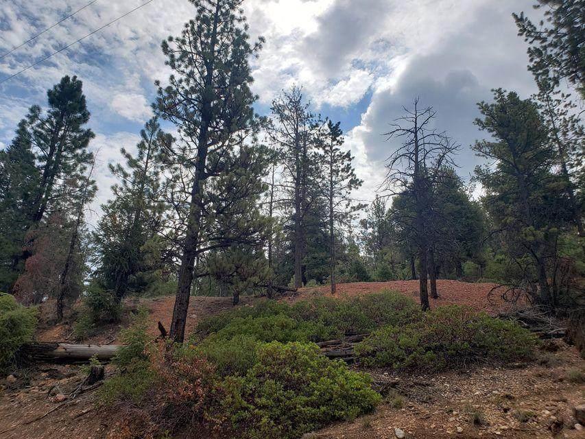 345 Pinyon Drive Mammoth Creek - Photo 1