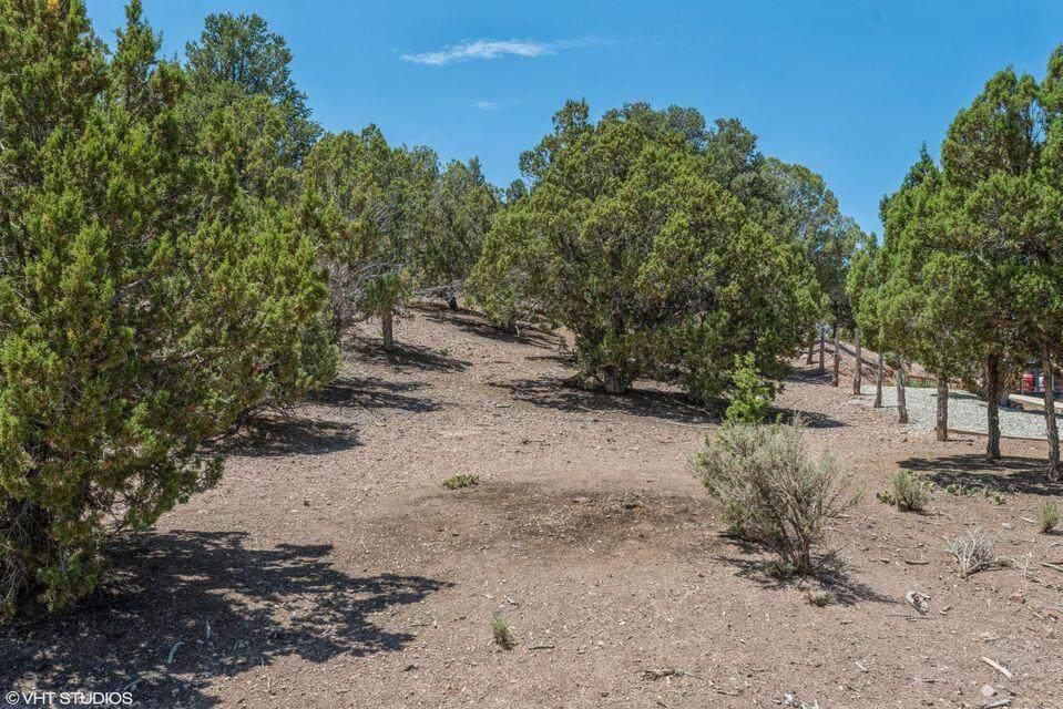 4260 Little Pinto Creek Road - Photo 1