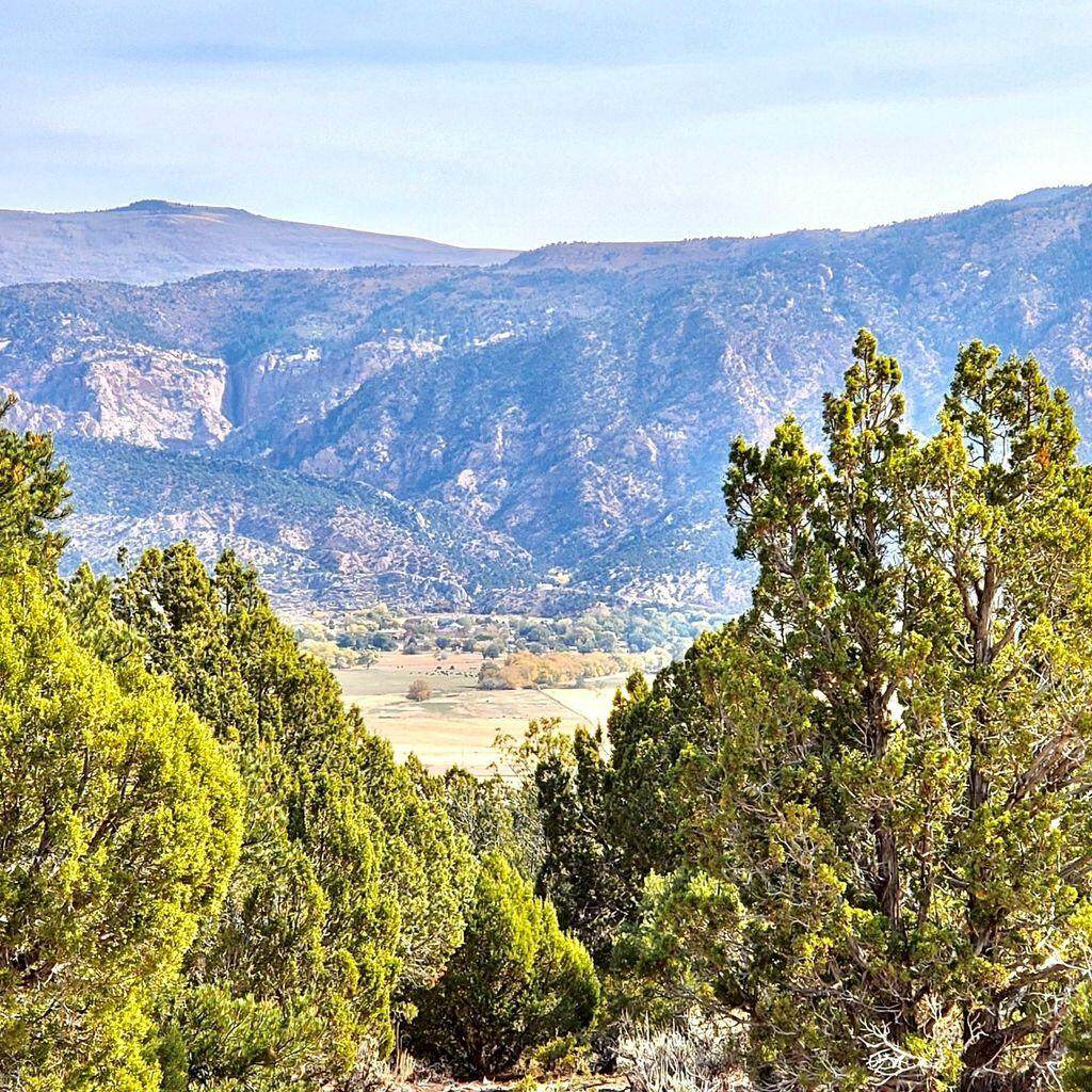 Lot 21 Harmony Mountain Ranch - Photo 1