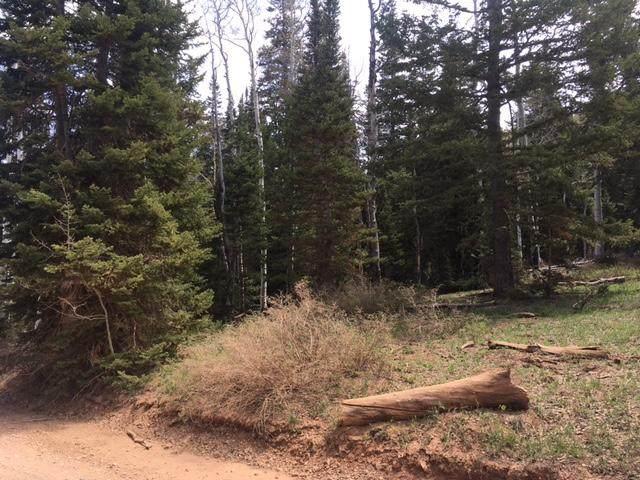 5 acre lot Dry Lakes Rd., Brian Head, UT 84719 (MLS #21-224865) :: Diamond Group