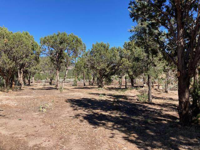 Butch Cassidy Trail #21, Central, UT 84722 (MLS #21-226386) :: Diamond Group