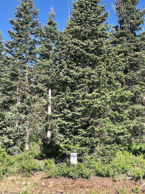 Whispering Pines Lot#75, Virgin, UT 84779 (MLS #20-213525) :: Langston-Shaw Realty Group