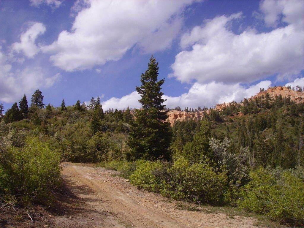 16 Skyhaven Mountain Retreat - Photo 1