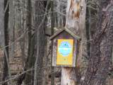 County Route 55 - Photo 12