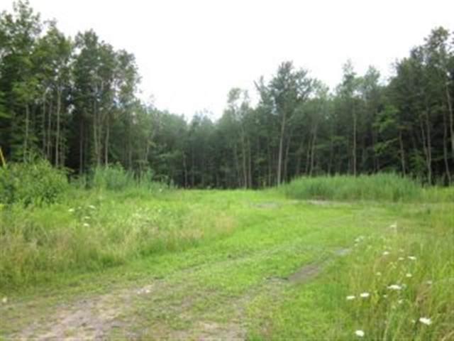 39 River Drive, Massena, NY 13662 (MLS #44432) :: TLC Real Estate LLC