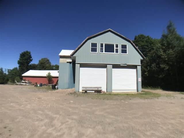 4043 State Highway 3, Star Lake, NY 13690 (MLS #44673) :: TLC Real Estate LLC