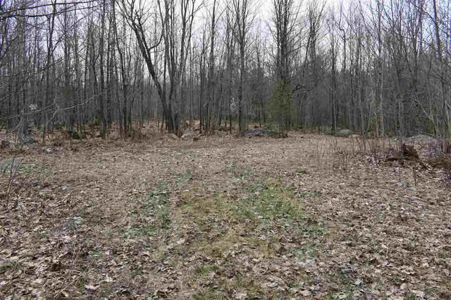 Lake Ozonia Road, Hopkinton, NY 12965 (MLS #45141) :: TLC Real Estate LLC